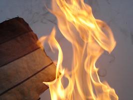 Flammskyddsmedel